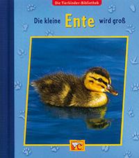 Die kleine Ente wird groß