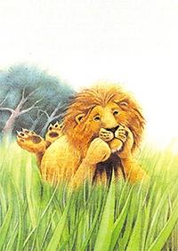 10er Set Postkarten, Leo
