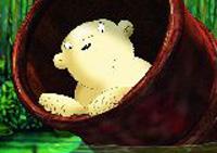 10er Set Postkarten, Kleiner Eisbär, Wieder da!