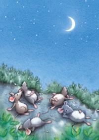 10er Set Postkarten, Mats, Mondnacht