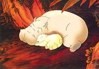 10er Set Postkarten, Kleiner Eisbär, Gemütlich
