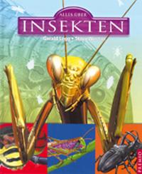 Alles über Insekten