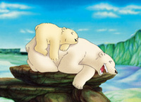 10er Set Postkarten, Kleiner Eisbär: Mit dir ist es lustig