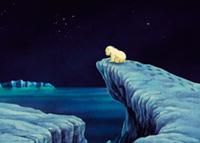 10er Set Postkarten, Kleiner Eisbär; Abenteuer