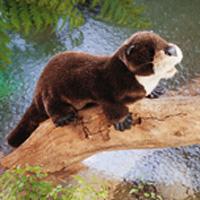 Folkmanis Tier-Handpuppe Flussotter
