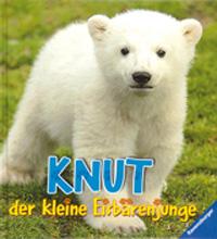 Knut der kleine Eisbärenjunge