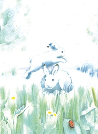 10er Set Postkarten,  Hoppel beim Bockspringen
