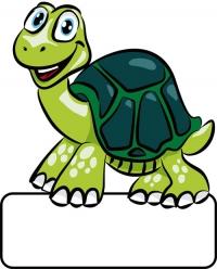 Schildkröte grün - Geburtstafel