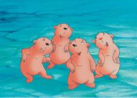 10er Set Postkarten, Kleiner Eisbär; Freue dich mit uns