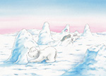 10er Set Postkarten, Kleiner Eisbär; Ich freue mich, dich wiederzusehen