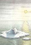 10er Set Postkarten, Kleiner Eisbär auf Eisscholle