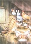 10er Set Postkarten, Hoppel im Hühnerstall