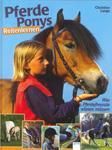 Pferde, Ponys - Reitenlernen