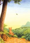 10er Set Postkarten, Braunbär im Herbst