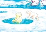 10er Set Postkarten, Kleiner Eisbär, ich lass dich nicht sitzen