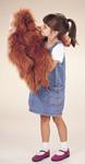 Folkmanis Tier-Handpuppe Orangutan