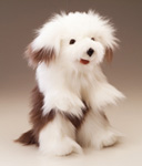 Folkmanis Tier-Handpuppe Hirtenhund