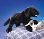 Folkmanis Tier-Handpuppe Baby Labrador schwarz