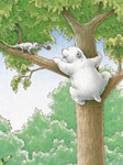 10er Set Postkarten, Kl. Eisbär wer bist du?